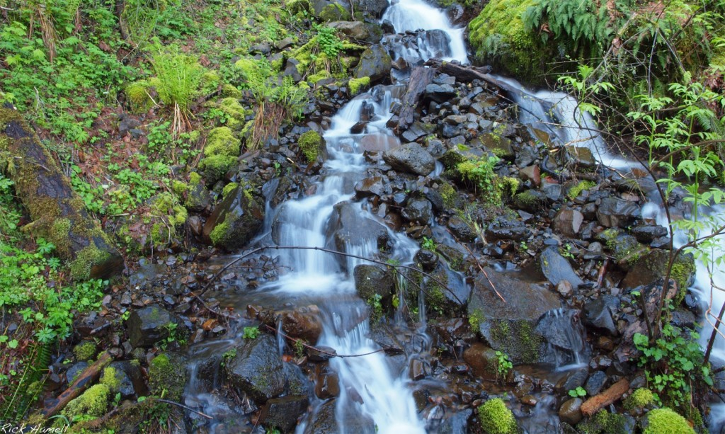 Small Multnomah Falls