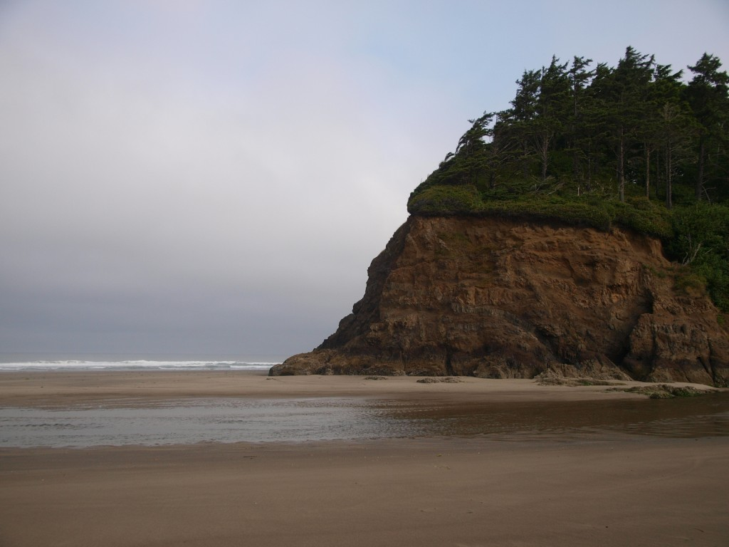 Neskowin Oregon Ghost Forest
