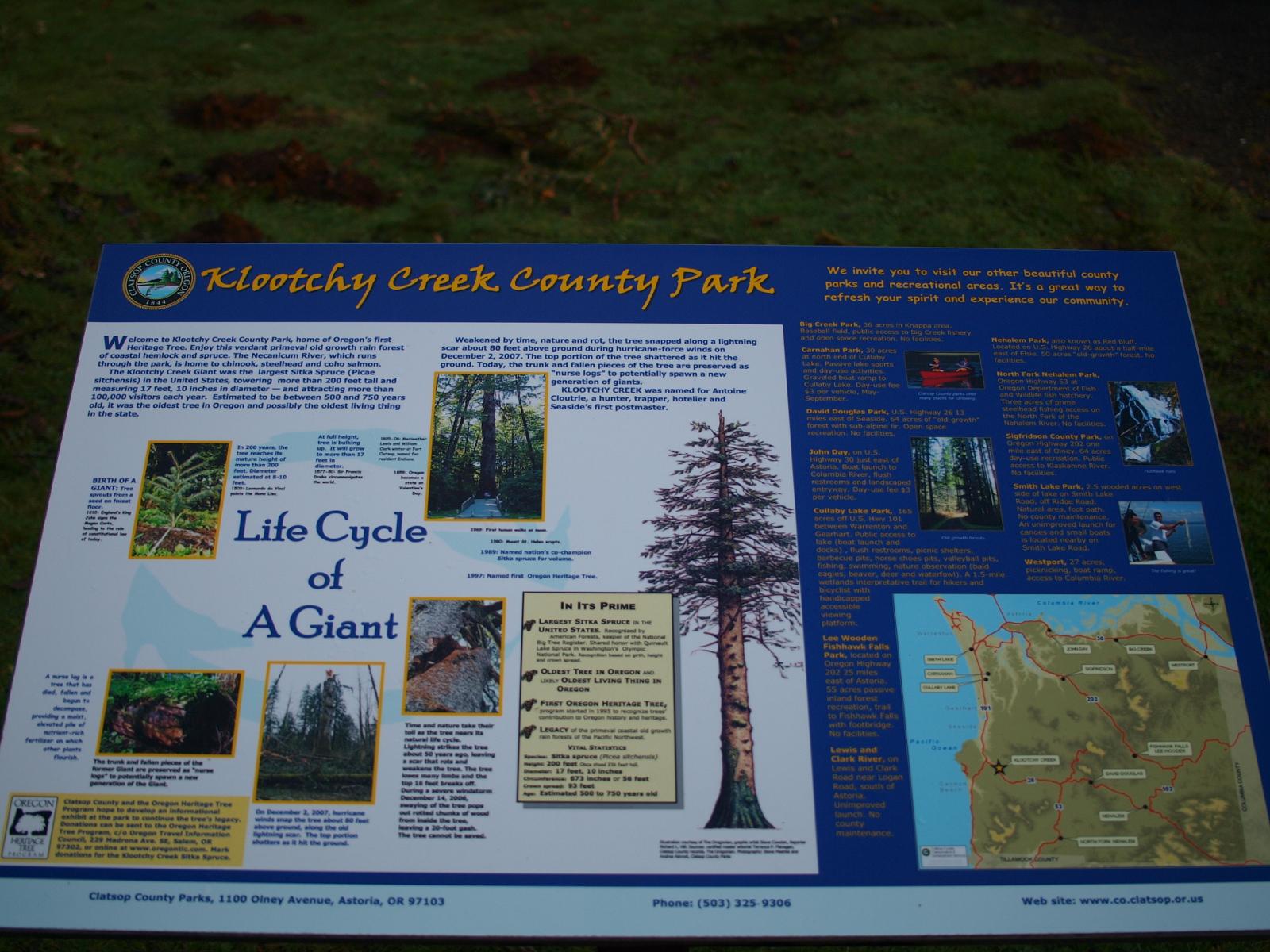 Klootchy Creek, Clatstop County, Oregon