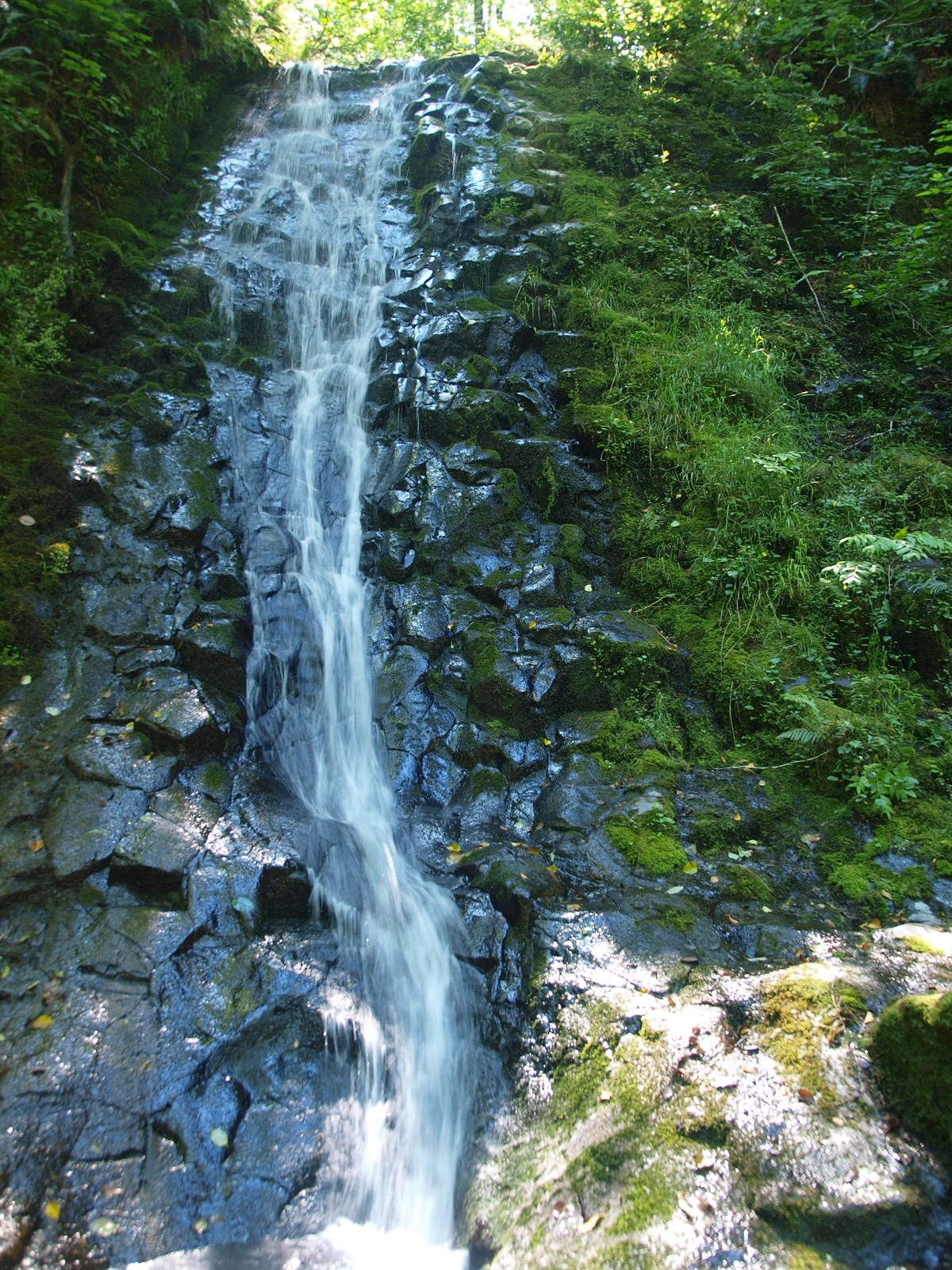 Bridge Creek Falls, Tillamook County, Oregon