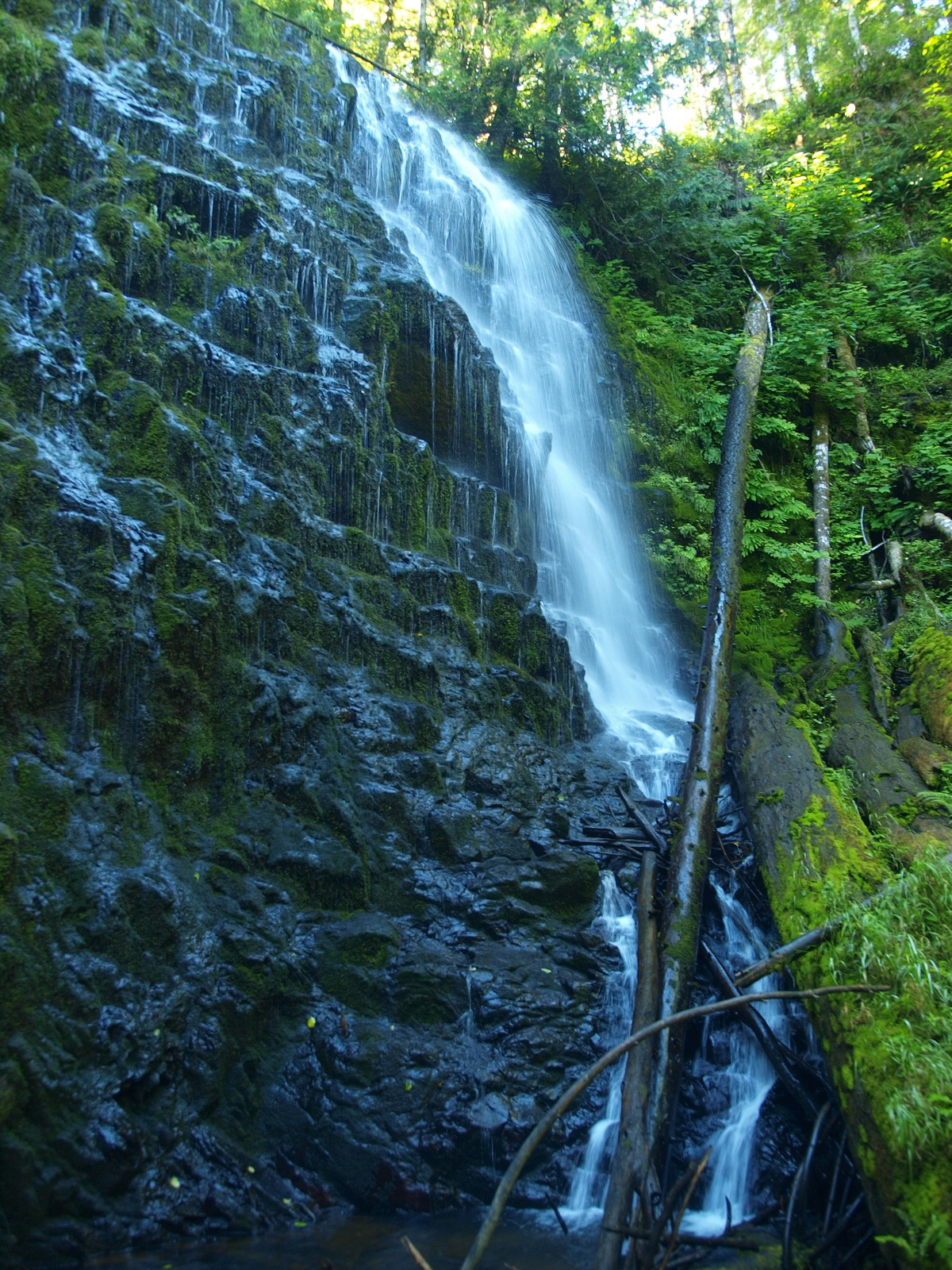 University Falls, Tillamook National Forest - Oregon