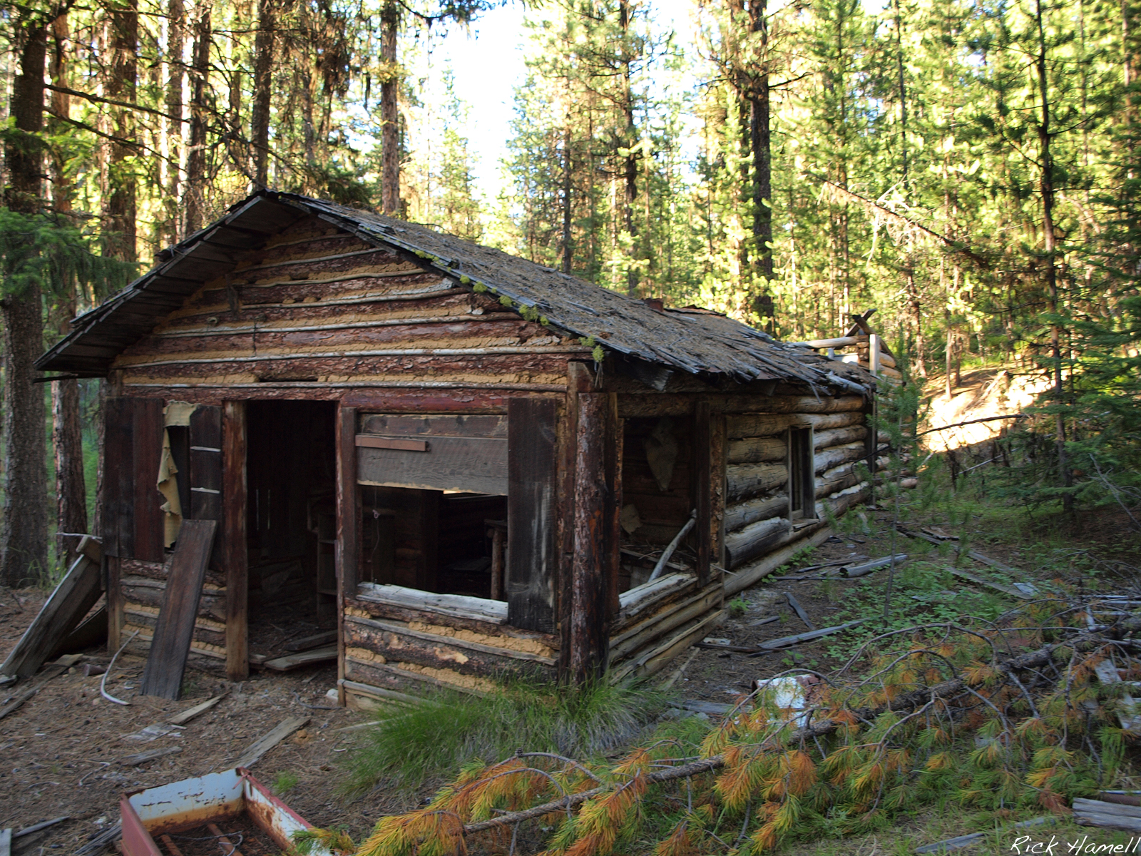 Image Gallery Log Cabin In Forest