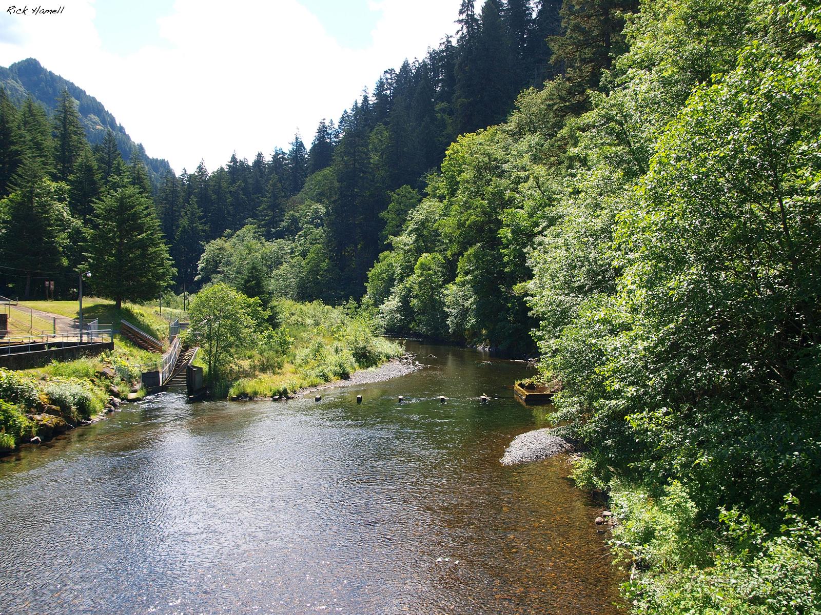 Eagle Creek Overlook Pacific Northwest Photoblog