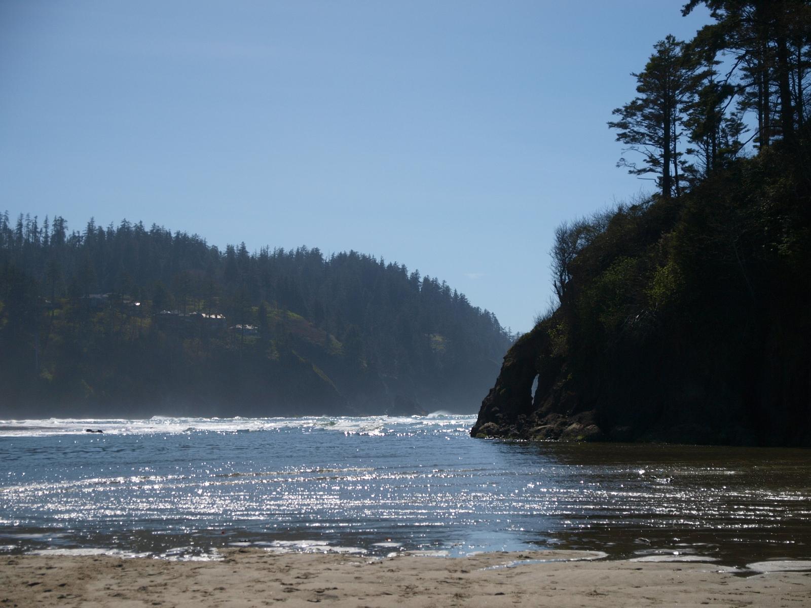 Neskowin oregon ghost forest pacific northwest photoblog for Neskowin beach