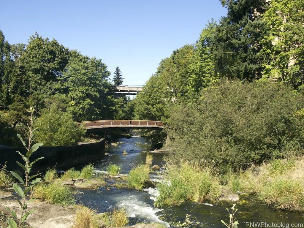 Tumwater Falls Olympia Washington